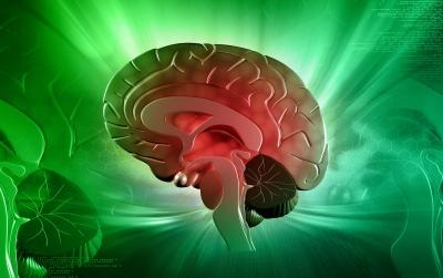 Hjernens (bevidste) kapacitet